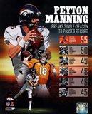 Peyton Manning Single Season TD Record