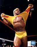 Hulk Hogan in action