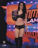 Paige 2014 Summer Slam Action