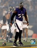 Terrell Suggs 2014 Action