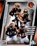 Cincinnati Bengals 2014 Team Composite