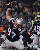Rob Gronkowski Touchdown celebration AFC Championship Game 2014 Playoffs