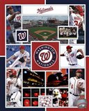 Washington Nationals 2015 Team Composite