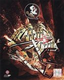 Florida State University Seminoles Helmet Composite