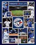 Toronto Blue Jays 2015 Team Composite