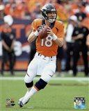 Peyton Manning 2015 Action