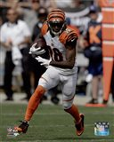 A.J. Green 2015 Action