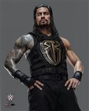 Roman Reigns 2016 Posed