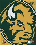 North Dakota State Bison 2016 Logo