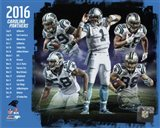 Carolina Panthers 2016 Team Composite