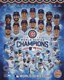 Chicago Cubs 2016 World Series Champions Composite