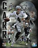 Derek Carr 2016 Portrait Plus