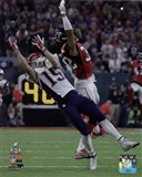 Chris Hogan Super Bowl LI