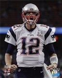 Tom Brady Super Bowl LI 2017