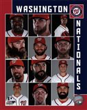 Washington Nationals 2017 Team Composite