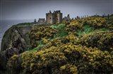 Medieval Ruins 4