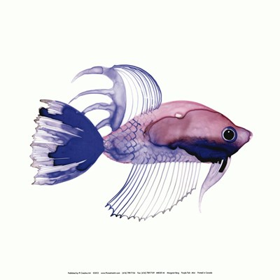 Purple Fish Poster by Margaret Berg for $15.00 CAD