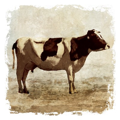 Rustic Cow Poster by Edward Selkirk for $15.00 CAD