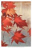Maple Leaves I - mini