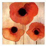 Orange Poppies I -Mini