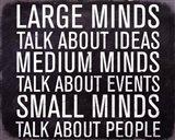 Large Minds - Mini