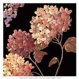Velvet Hydrangeas I - Mini