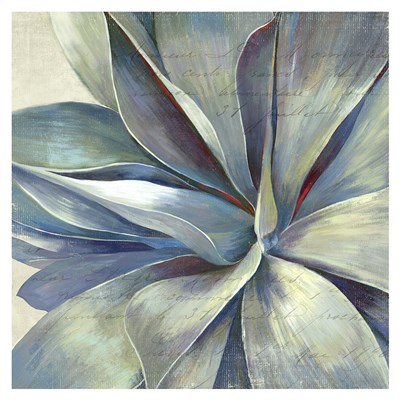Succulence II - Mini Poster by Aimee Wilson for $15.00 CAD