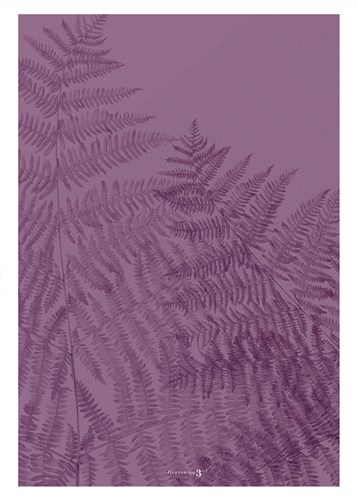Fern Poster by Heaven on 3rd for $26.25 CAD