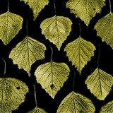 Green Leafs - your walls, your style!
