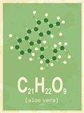 Molecule Aloe Vera Green