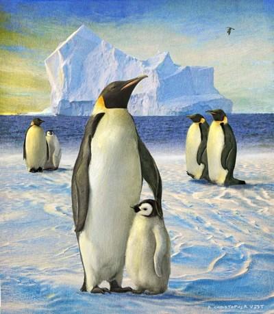 Penguins Poster by Chris Vest for $53.75 CAD