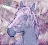 Palm Grove Horse