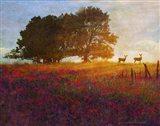 Trees Poppies Deer 2