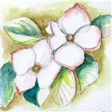 Watercolor Dogwood