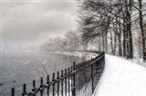 Central Park Storm 2
