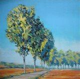 Normandy Poplars II