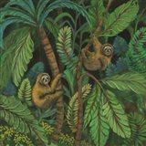 Sloth Jouorney I