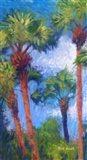 Strictly Palms 8