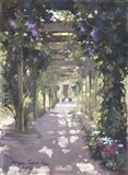Pergola Violet Watercolor