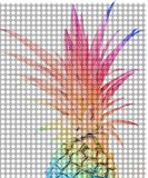 Colorful Pineapple 4