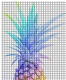 Colorful Pineapple 5