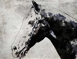 Black Ghost Horse