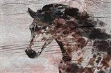 Running Wild Horse 11