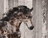 Running Wild Horse 12