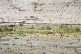 Rustic Landscape 21