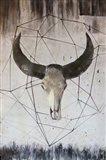 Buffalo Skull 2