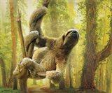 Sun Soaker Sloth
