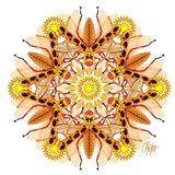 Tan Longhorn Beetle Mandala