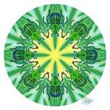 Green Beetle Pine Mandala