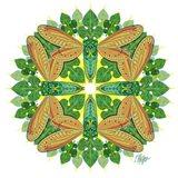 Green Cicada Sunshine Mandala